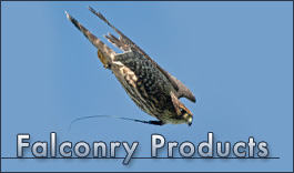 Falconry Products